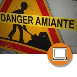 AMIANTO PRL (Autor) (4-20h) - ONLINE