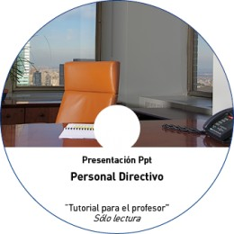 TUTORIAL - DIRECTIVOS (METAL NO OBRA)