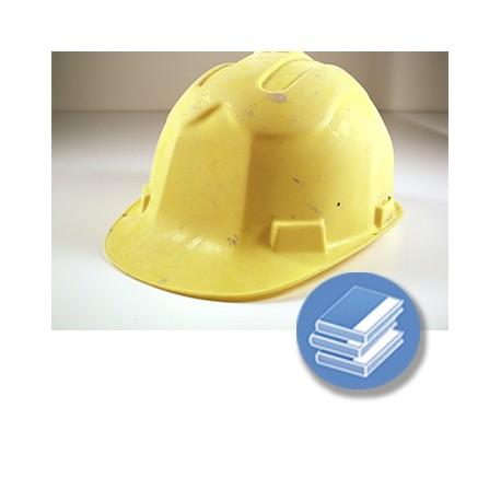 NIVEL BASICO CONSTRUCCION RP 60H TPC