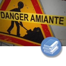 AMIANTO PRL (Autor) (4-20h) - LIBRO