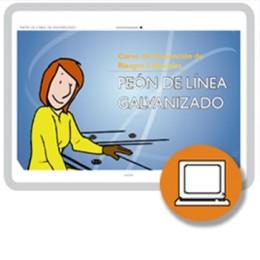 PEON DE LINEA DE GALVANIZADO (0-4h) - ONLINE