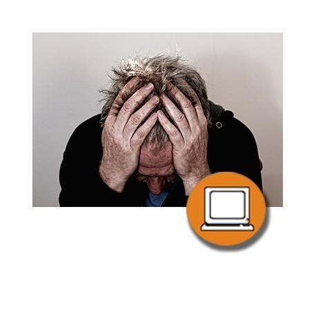 CARGA MENTAL - FACTORES PSICOSOCIALES PRL (4-20h) - ONLINE