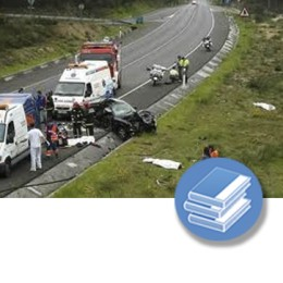 SEGURIDAD VIAL - ISO 39001 (4-20h) - LIBRO