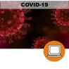 CORONAVIRUS COVID19 DESESCALADA PRL (4-10h) - ONLINE