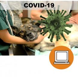VETERINARIOS CORONAVIRUS COVID19 ART19 (0-3h) - ONLINE